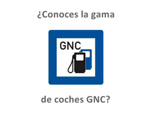 coches gas natural comprimido gnc